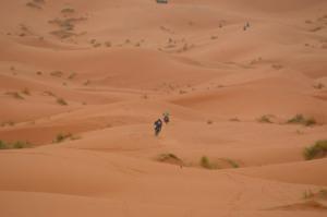 tuaregrally20121