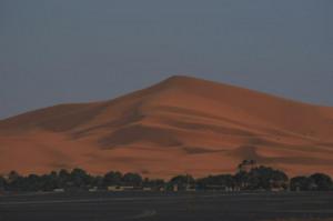 tuaregrally20122